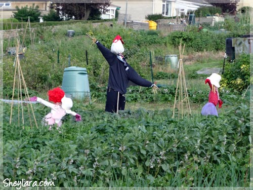 Cute scarecrows