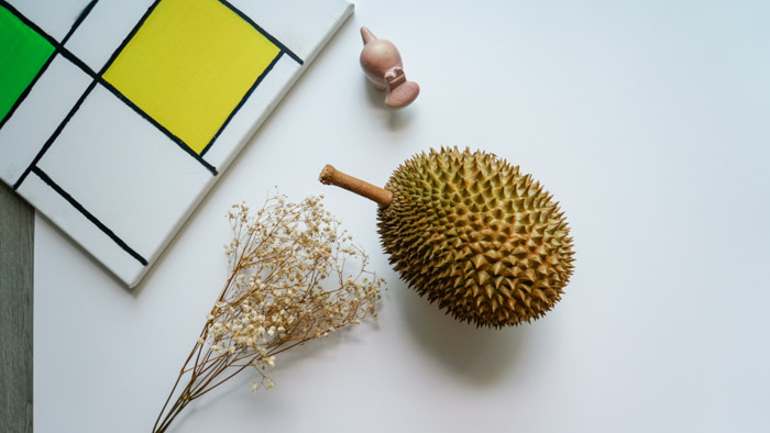 An artistically placed durian